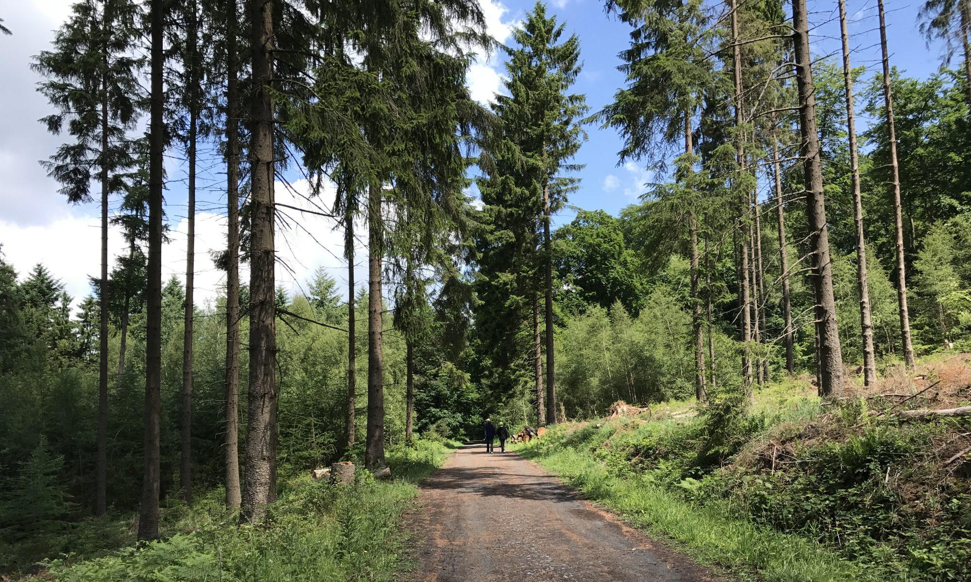 Ittenbach
